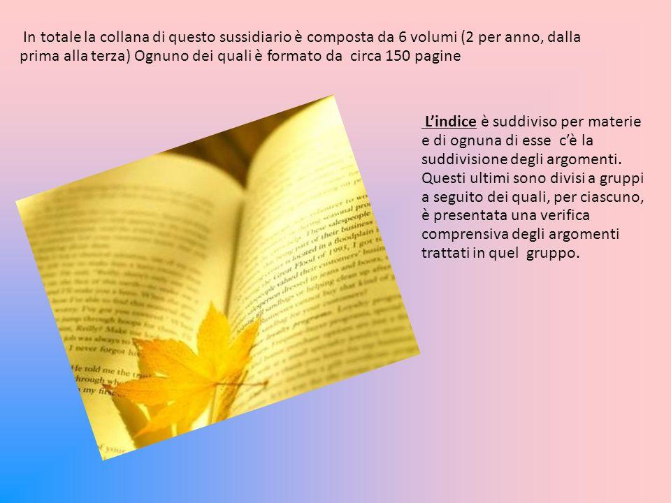 I capitoletti di ogni argomento sono divisi in sottoargomenti e per ognuno di essi viene fatta una spiegazione un esempio e un o due esercizi.