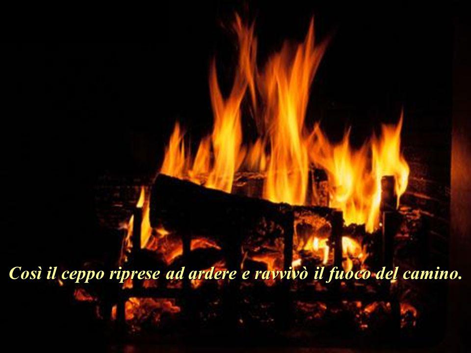 Così il ceppo riprese ad ardere e ravvivò il fuoco del camino..