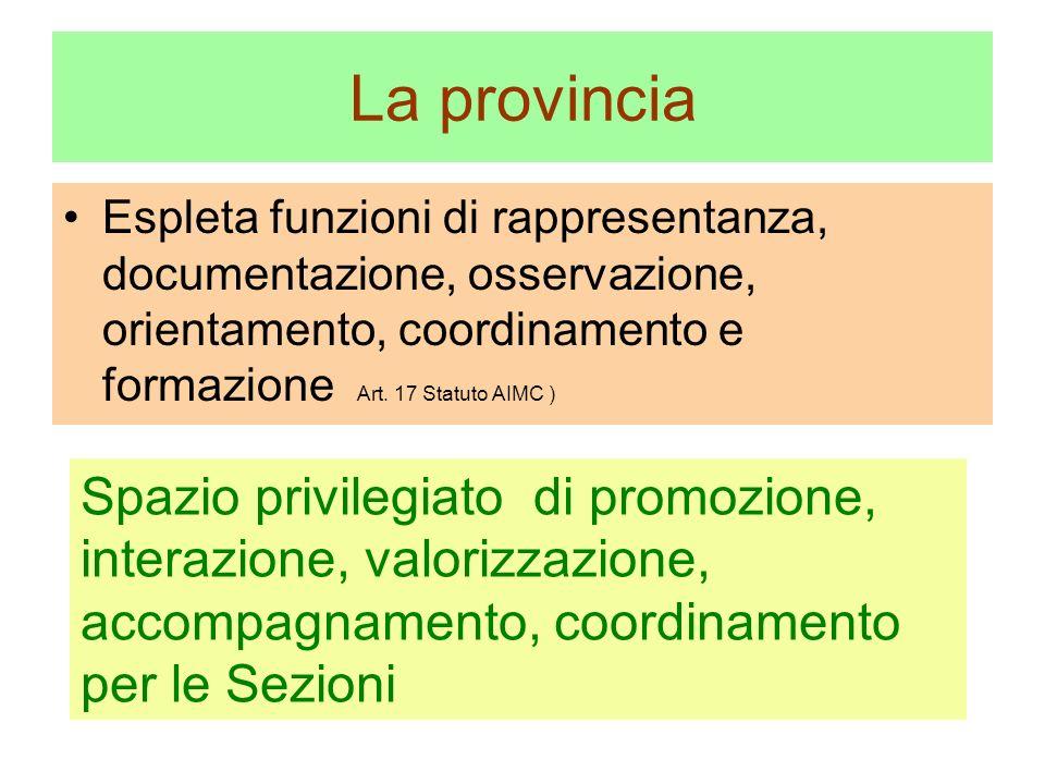 La provincia Espleta funzioni di rappresentanza, documentazione, osservazione, orientamento, coordinamento e formazione Art.