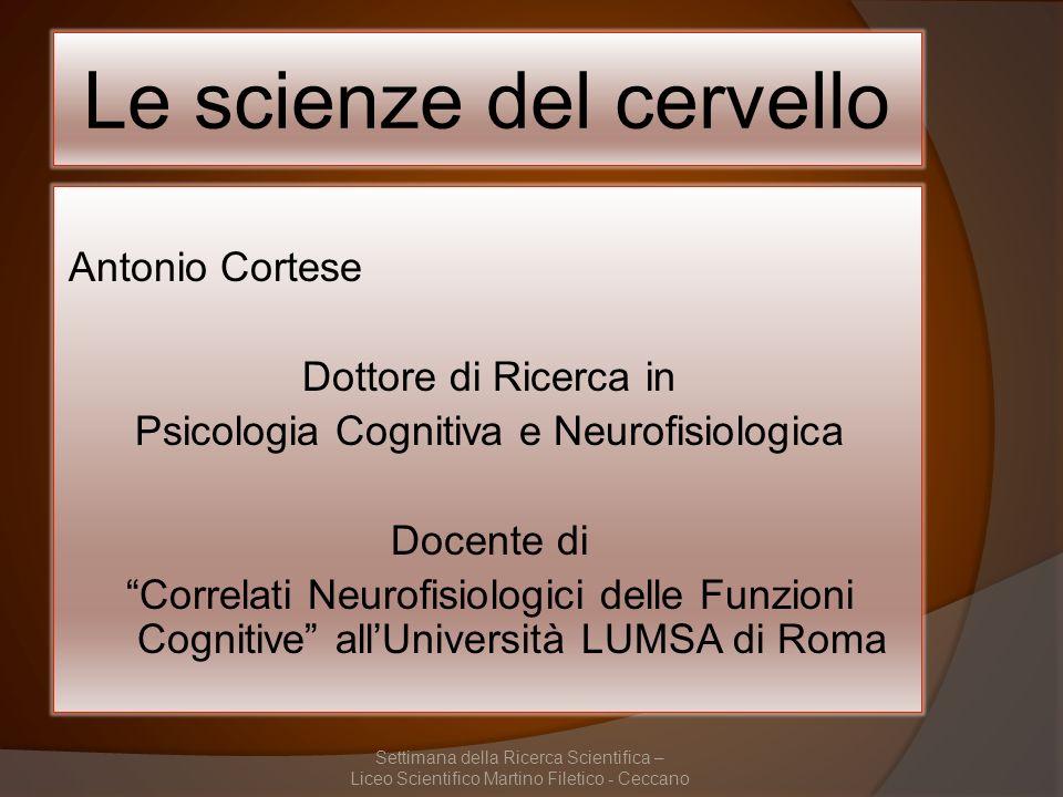 Studiare il cervello (come organo della mente) Studiare la mente (come funzione del cervello) Settimana della Ricerca Scientifica – Liceo Scientifico Martino Filetico - Ceccano