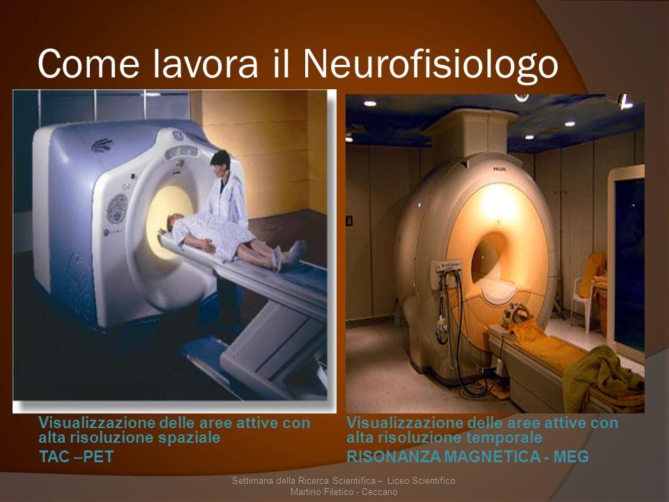 Come lavora il Neurofisiologo Visualizzazione delle aree attive con alta risoluzione spaziale TAC –PET Visualizzazione delle aree attive con alta risoluzione temporale RISONANZA MAGNETICA - MEG Settimana della Ricerca Scientifica – Liceo Scientifico Martino Filetico - Ceccano