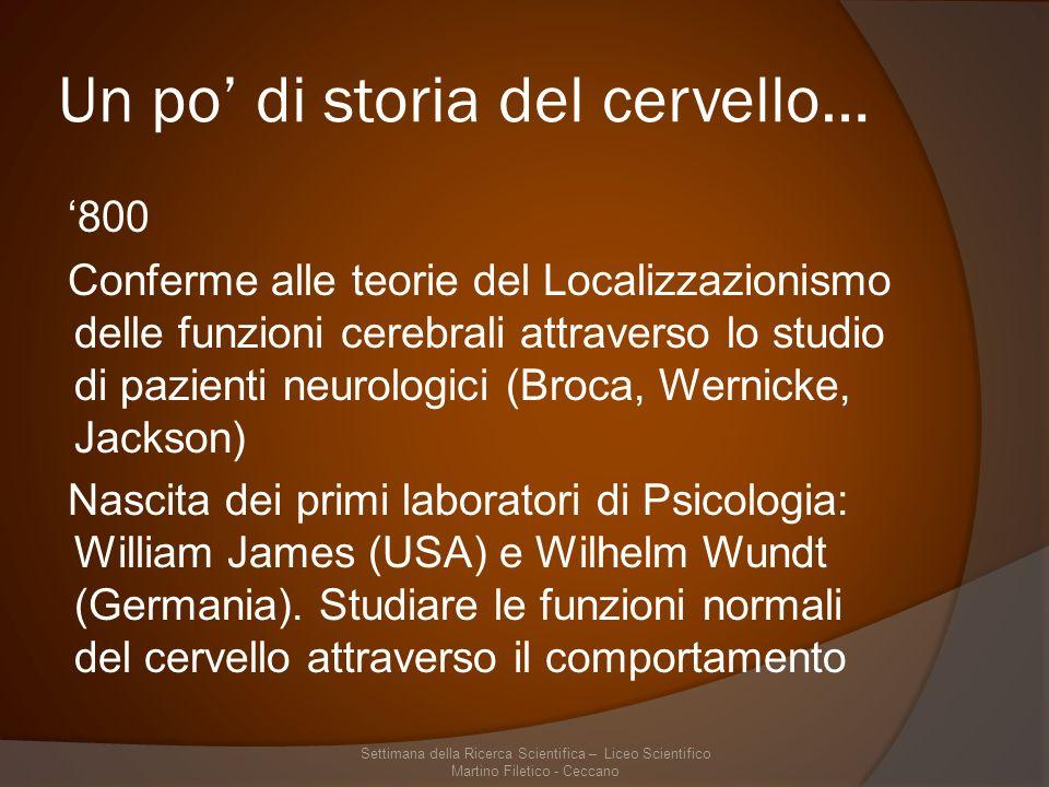 Un po di storia del cervello… 800 Conferme alle teorie del Localizzazionismo delle funzioni cerebrali attraverso lo studio di pazienti neurologici (Broca, Wernicke, Jackson) Nascita dei primi laboratori di Psicologia: William James (USA) e Wilhelm Wundt (Germania).