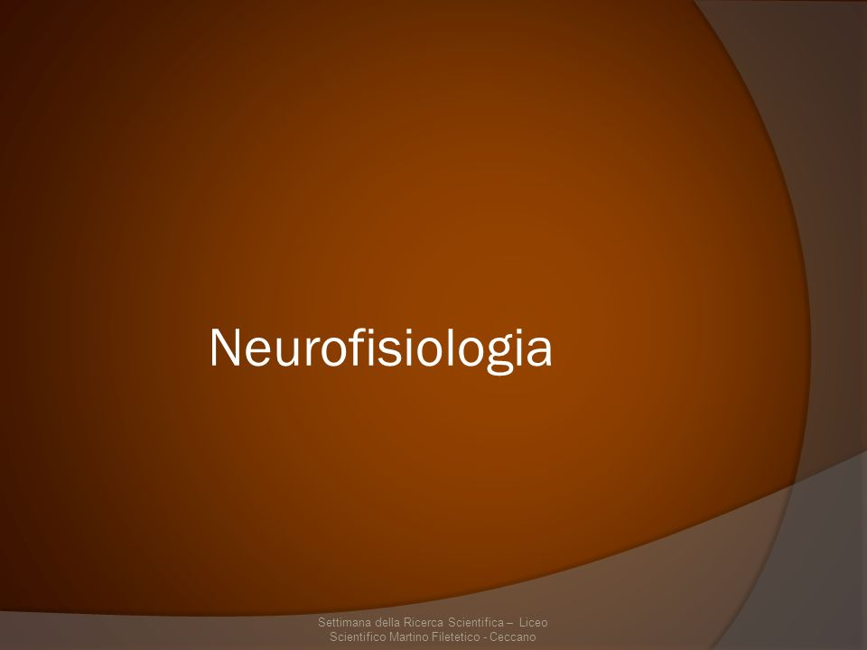 Neurofisiologia Funzionamento delle unità cellulari del Sistema Nervoso Centrale – i neuroni Studio delle modificazioni cellulari del neurone durante il suo ciclo vitale – plasticità neurale Studio delle modificazioni cellulari del neurone durante il suo ciclo vitale – plasticità neurale Come i neuroni comunicano tra di loro – plasticità sinaptica Come i neuroni comunicano tra di loro – plasticità sinaptica Come i neuroni si aggregano per assolvere a funzioni comuni – unità o nuclei neuronali Come i neuroni si aggregano per assolvere a funzioni comuni – unità o nuclei neuronali Come i nuclei neuronali si modificano e comunicano con gli altri nuclei – circuiti neuronali Come i nuclei neuronali si modificano e comunicano con gli altri nuclei – circuiti neuronali Funzionamento in parallelo dei circuiti cerebrali durante un determinato comportamento – organizzazione delle attività cerebrali Funzionamento in parallelo dei circuiti cerebrali durante un determinato comportamento – organizzazione delle attività cerebrali Settimana della Ricerca Scientifica – Liceo Scientifico Martino Filetico - Ceccano
