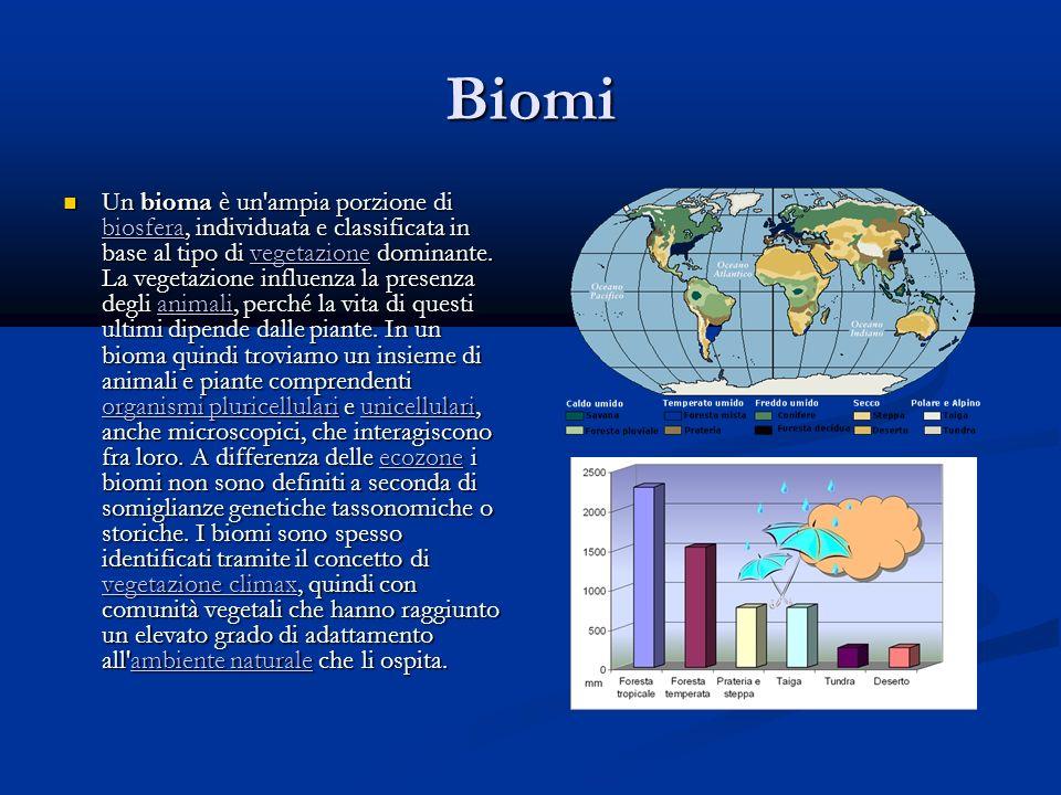 Biomi Un bioma è un ampia porzione di biosfera, individuata e classificata in base al tipo di vegetazione dominante.