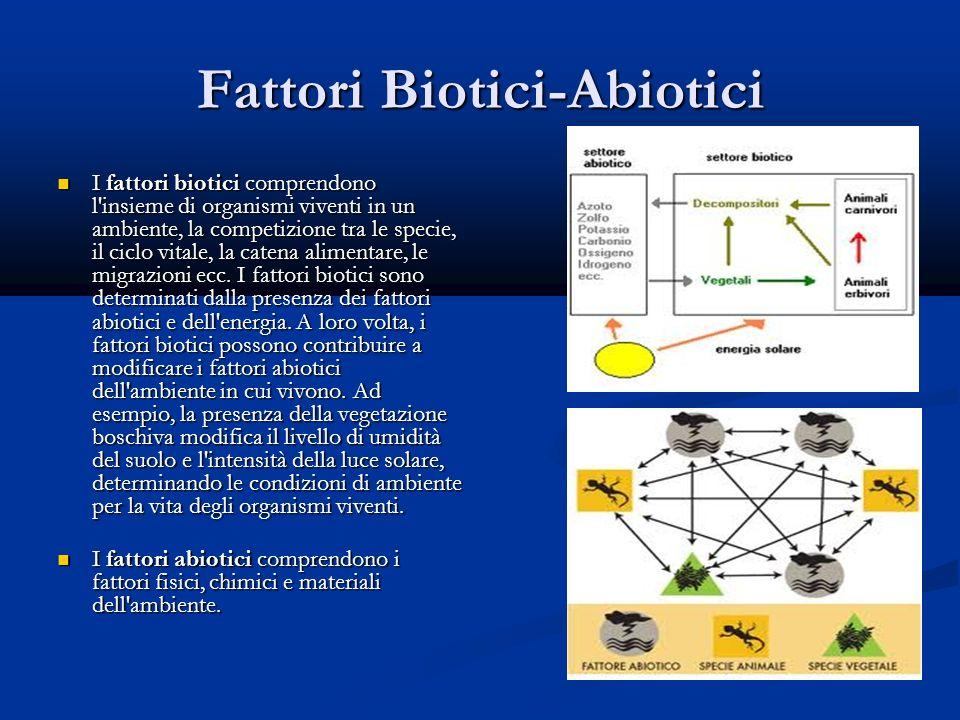 Fattori Biotici-Abiotici I fattori biotici comprendono l insieme di organismi viventi in un ambiente, la competizione tra le specie, il ciclo vitale, la catena alimentare, le migrazioni ecc.