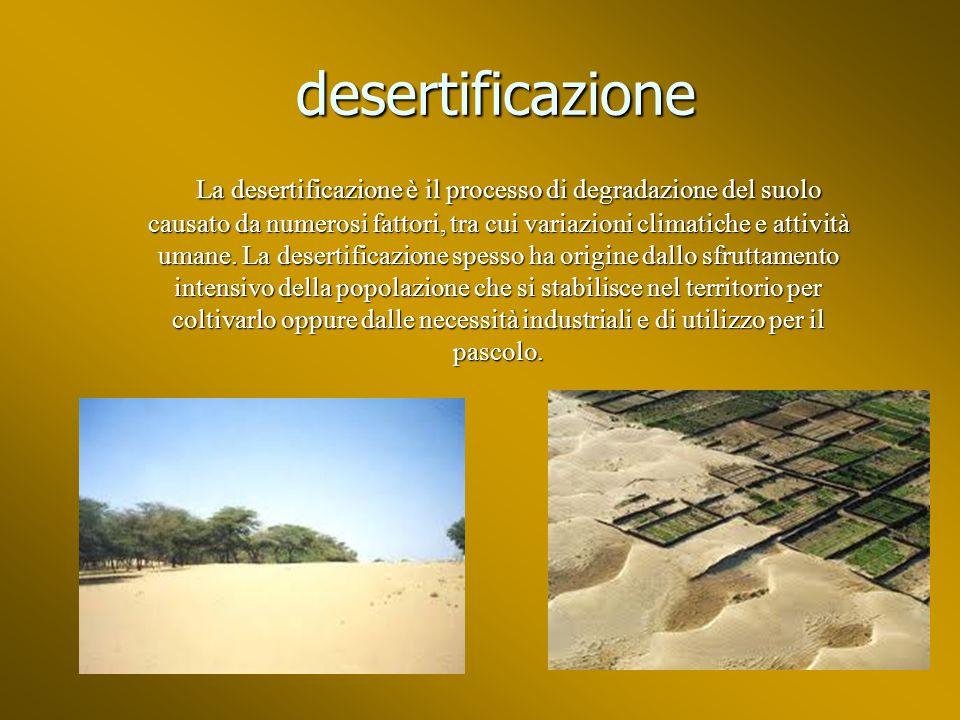 desertificazione desertificazione La desertificazione è il processo di degradazione del suolo causato da numerosi fattori, tra cui variazioni climatiche e attività umane.