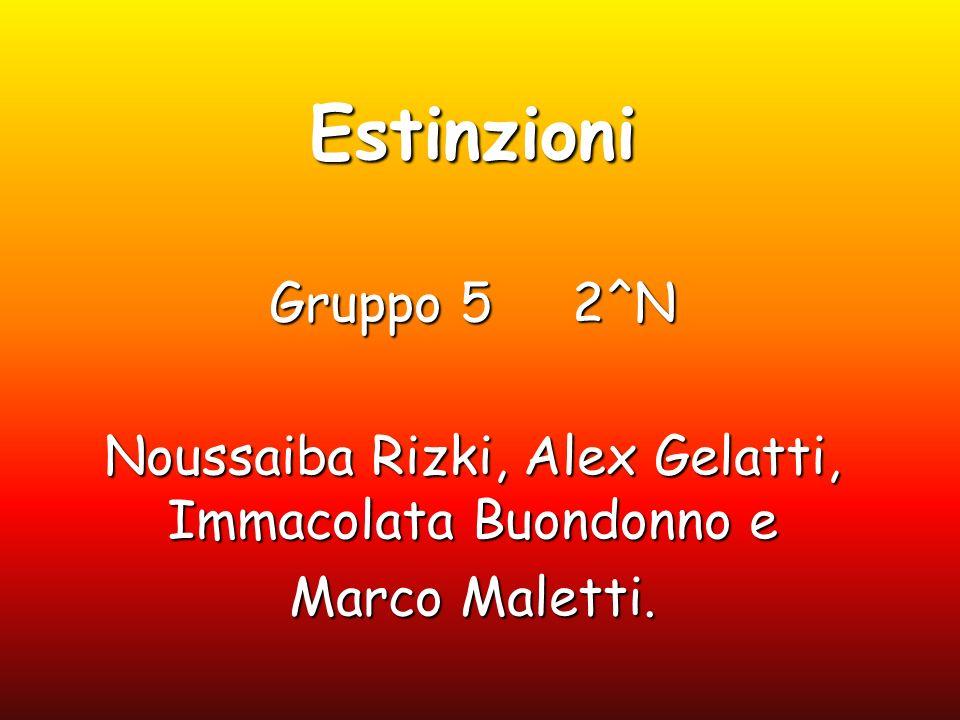 Estinzioni Gruppo 5 2^N Noussaiba Rizki, Alex Gelatti, Immacolata Buondonno e Marco Maletti.