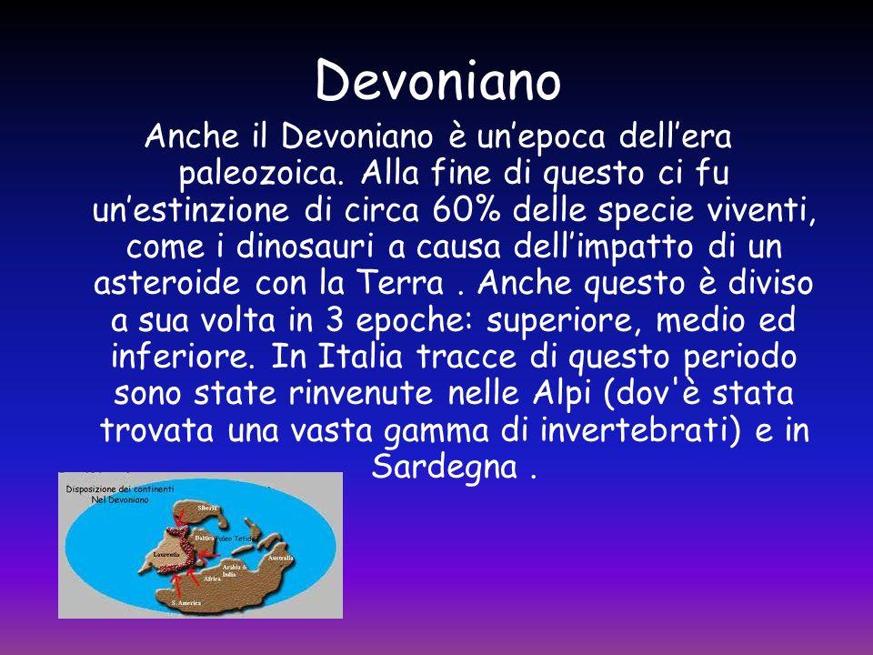 Devoniano Anche il Devoniano è unepoca dellera paleozoica. Alla fine di questo ci fu unestinzione di circa 60% delle specie viventi, come i dinosauri
