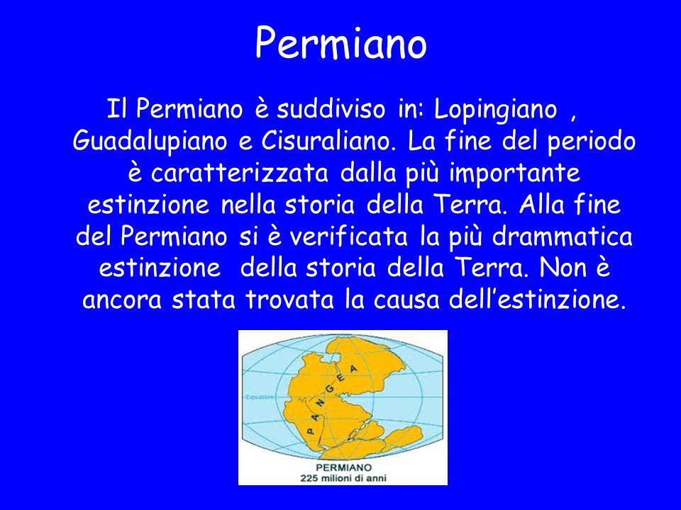 Permiano Il Permiano è suddiviso in: Lopingiano, Guadalupiano e Cisuraliano. La fine del periodo è caratterizzata dalla più importante estinzione nell