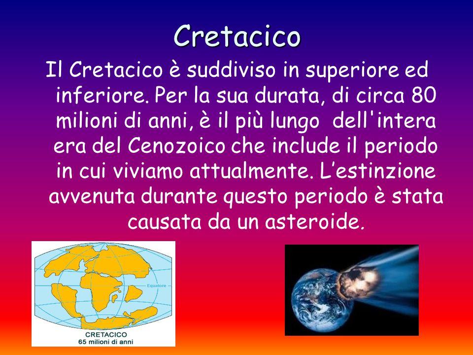 Cretacico Il Cretacico è suddiviso in superiore ed inferiore. Per la sua durata, di circa 80 milioni di anni, è il più lungo dell'intera era del Cenoz