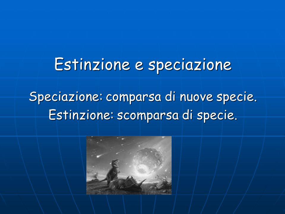 Estinzione e speciazione Speciazione: comparsa di nuove specie. Estinzione: scomparsa di specie.