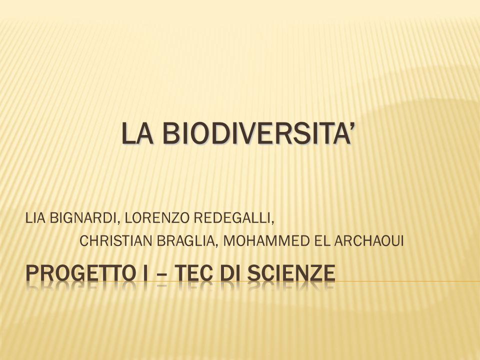 Per biodiversità si intende l insieme di tutte le forme viventi geneticamente diverse e degli ecosistemi ad esse correlati.