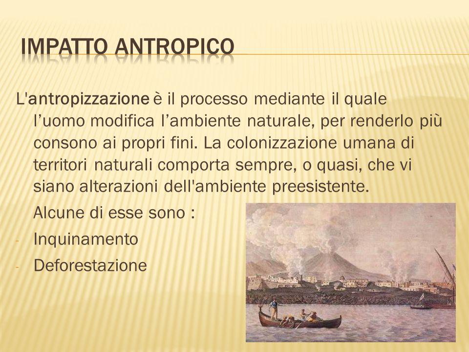 L'antropizzazione è il processo mediante il quale luomo modifica lambiente naturale, per renderlo più consono ai propri fini. La colonizzazione umana