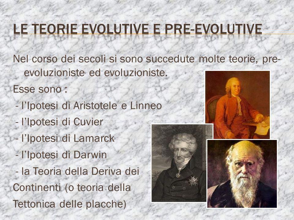 Nel corso dei secoli si sono succedute molte teorie, pre- evoluzioniste ed evoluzioniste. Esse sono : - lIpotesi di Aristotele e Linneo - lIpotesi di