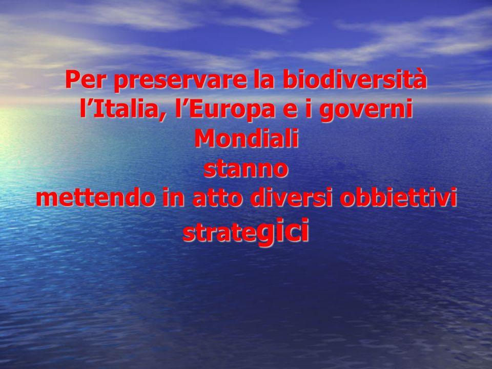 Per preservare la biodiversità lItalia, lEuropa e i governi Mondiali stanno mettendo in atto diversi obbiettivi strate gici