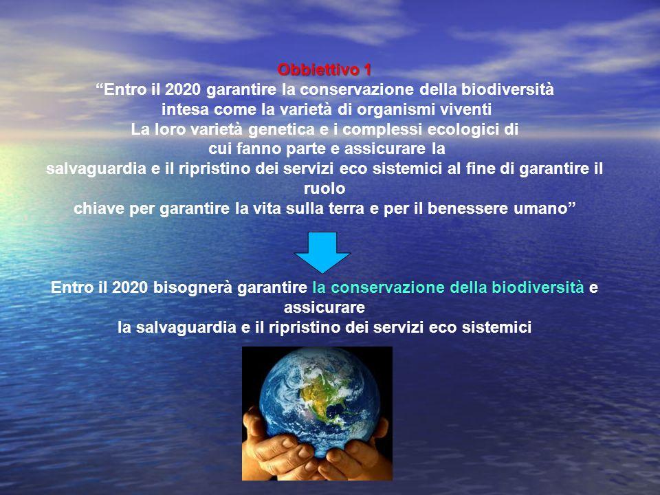 Obbiettivo 1 Entro il 2020 garantire la conservazione della biodiversità intesa come la varietà di organismi viventi La loro varietà genetica e i comp