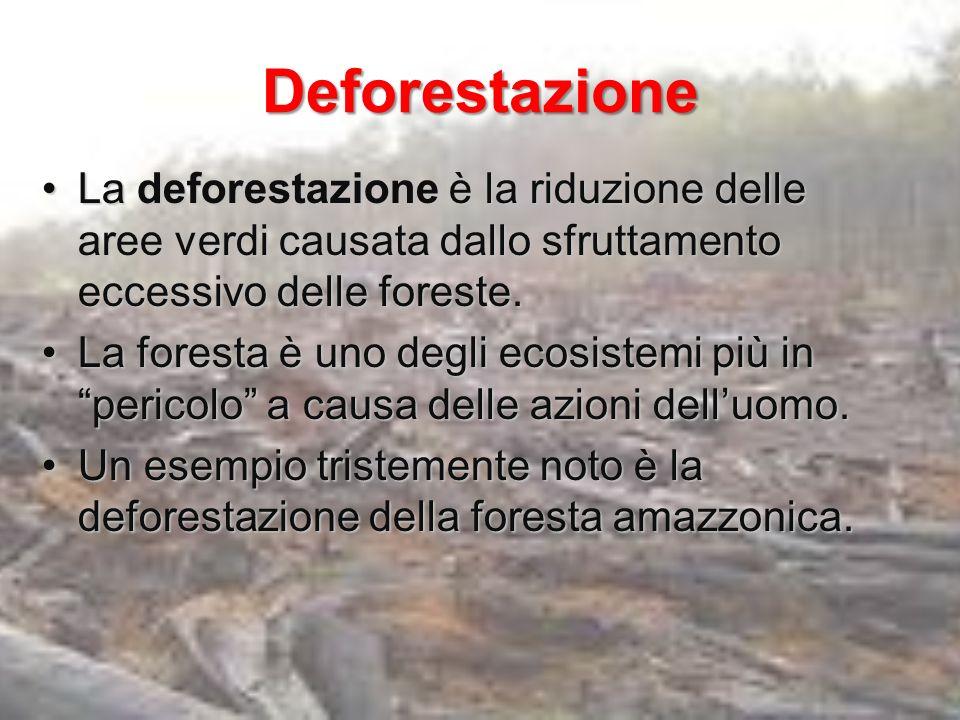 Desertificazione È leccessivo sfruttamento del suolo che, perdendo la sua fertilità, diventa inutilizzabile per le coltivazioni e, conseguentemente, gli animali muoiono.È leccessivo sfruttamento del suolo che, perdendo la sua fertilità, diventa inutilizzabile per le coltivazioni e, conseguentemente, gli animali muoiono.