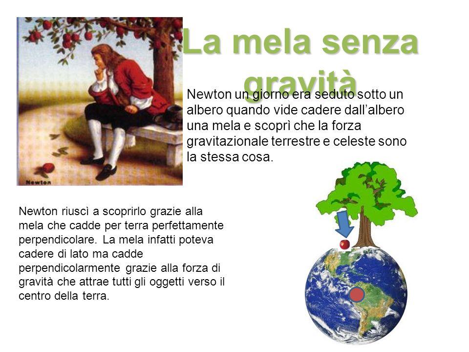 La mela senza gravità Newton un giorno era seduto sotto un albero quando vide cadere dallalbero una mela e scoprì che la forza gravitazionale terrestr