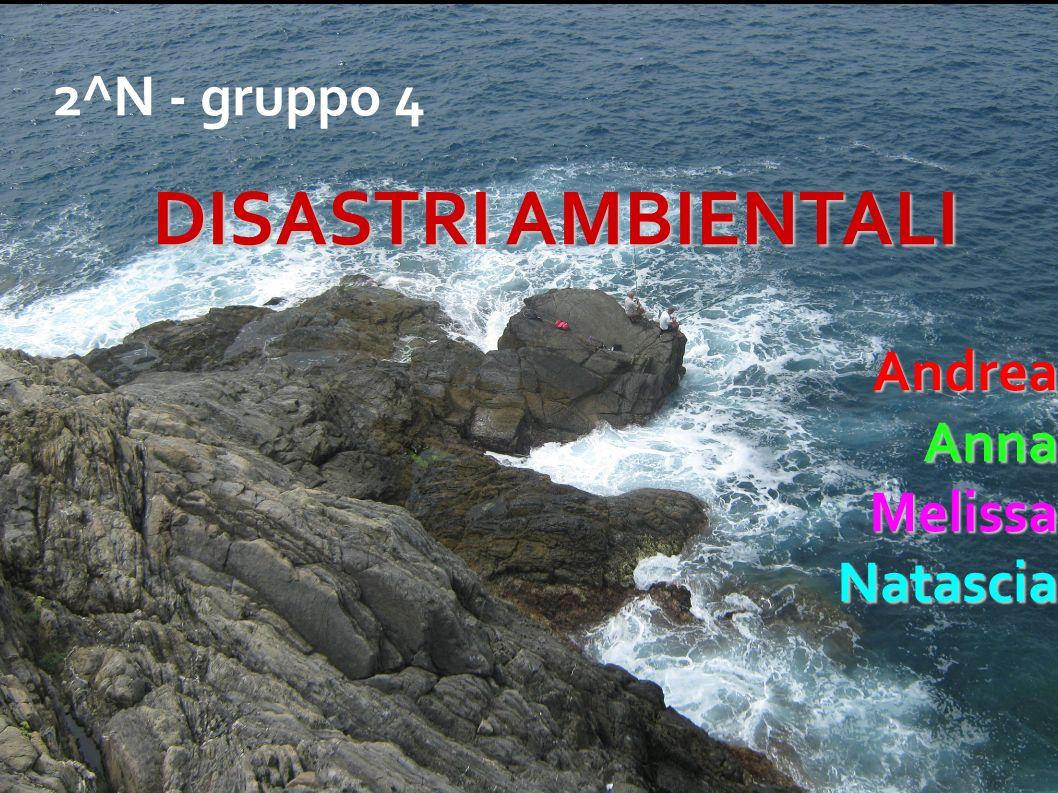 2^N - gruppo 4 DISASTRI AMBIENTALI AndreaAnnaMelissaNatascia