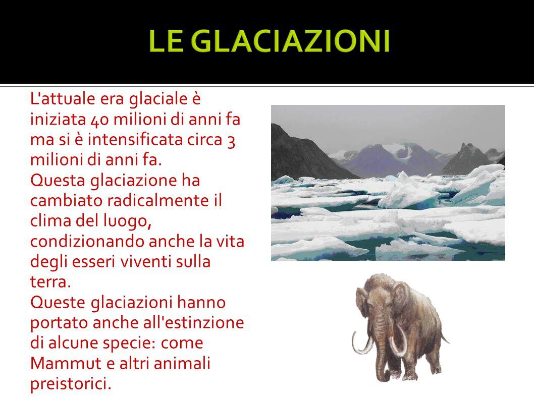 L'attuale era glaciale è iniziata 40 milioni di anni fa ma si è intensificata circa 3 milioni di anni fa. Questa glaciazione ha cambiato radicalmente