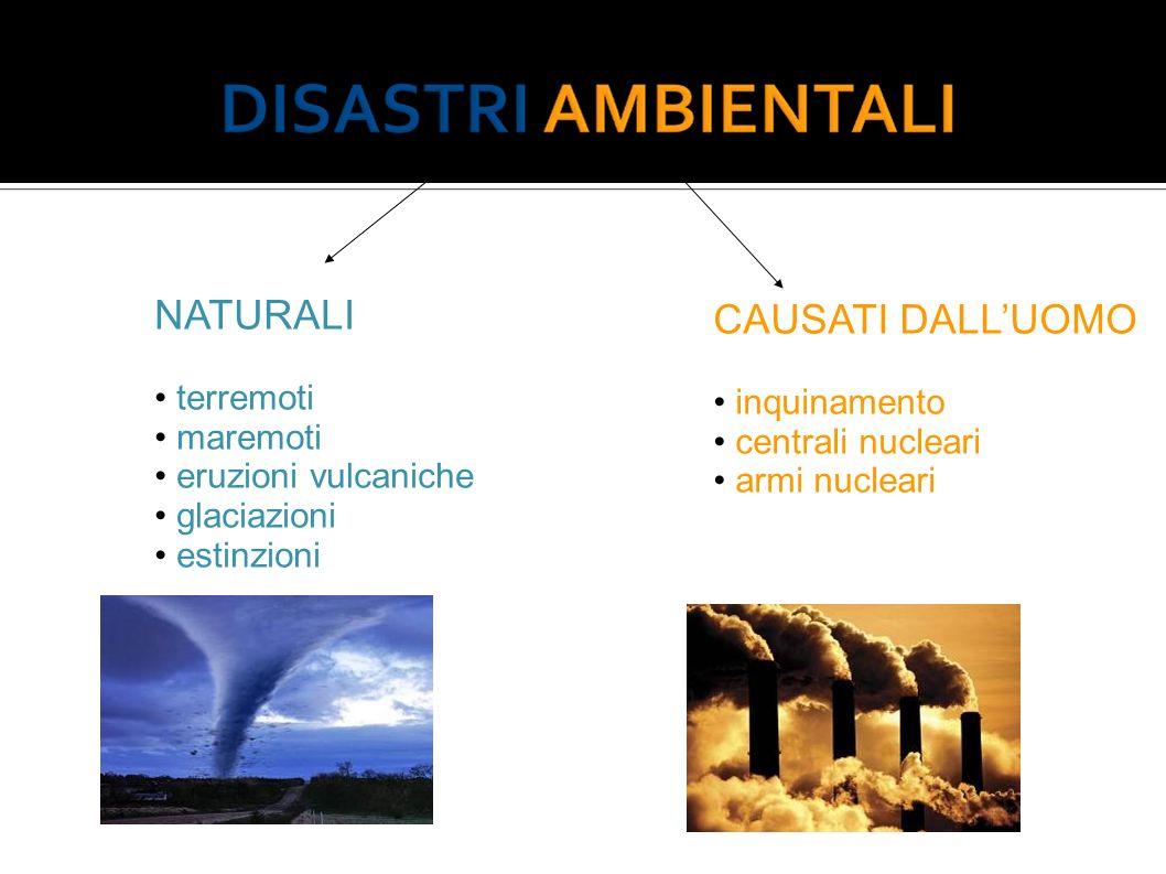 NATURALI terremoti maremoti eruzioni vulcaniche glaciazioni estinzioni CAUSATI DALLUOMO inquinamento centrali nucleari armi nucleari