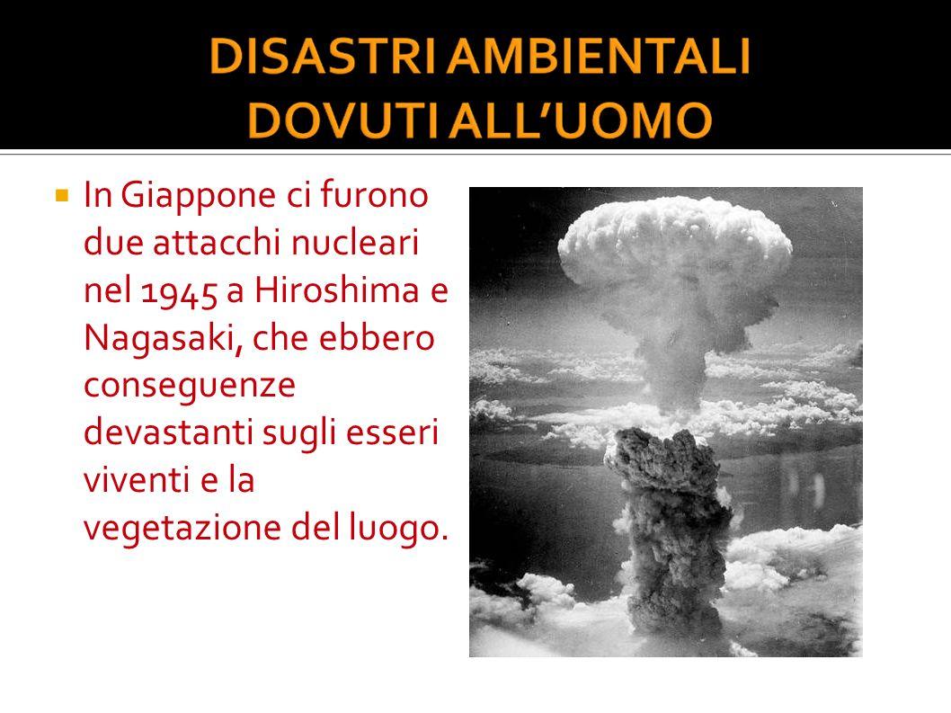 In Giappone ci furono due attacchi nucleari nel 1945 a Hiroshima e Nagasaki, che ebbero conseguenze devastanti sugli esseri viventi e la vegetazione d