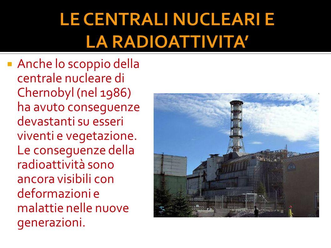 Anche lo scoppio della centrale nucleare di Chernobyl (nel 1986) ha avuto conseguenze devastanti su esseri viventi e vegetazione. Le conseguenze della