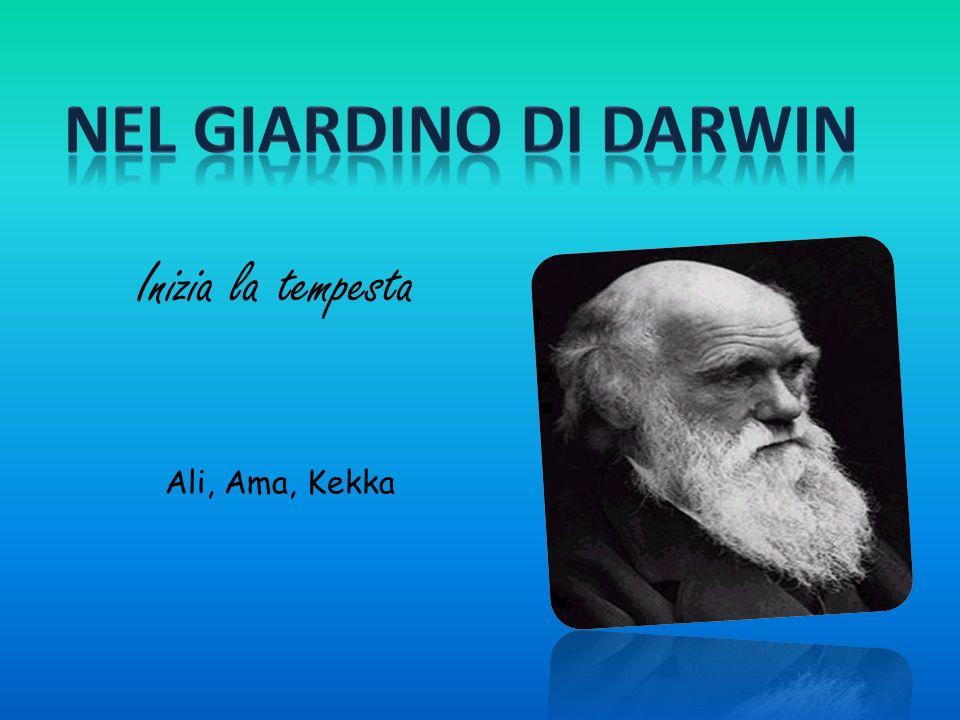 DOPO IL RITORNO Dal BEAGLE… Il video che abbiamo visto parla di alcuni degli esperimenti più importanti che Darwin ha svolto in Inghilterra.