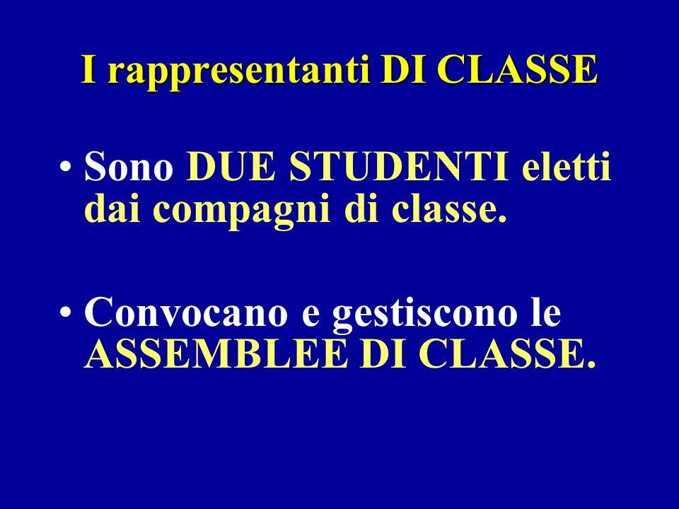 I rappresentanti DI CLASSE Sono DUE STUDENTI eletti dai compagni di classe.