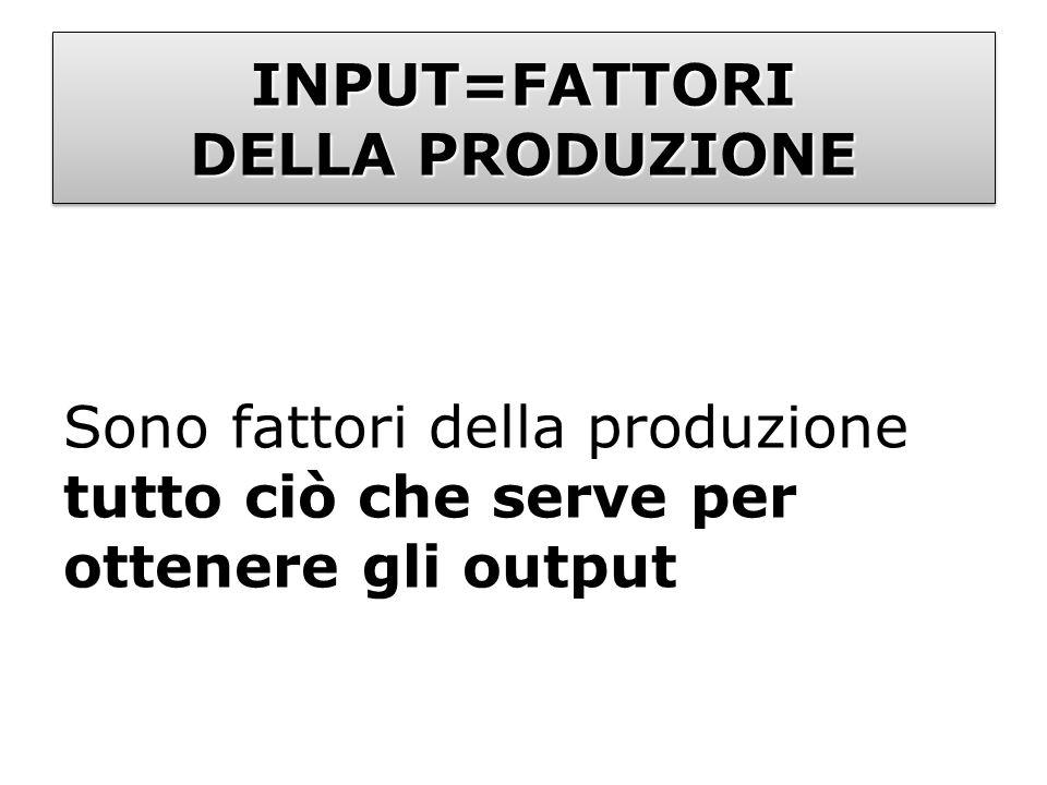 INPUT=FATTORI DELLA PRODUZIONE Sono fattori della produzione tutto ciò che serve per ottenere gli output