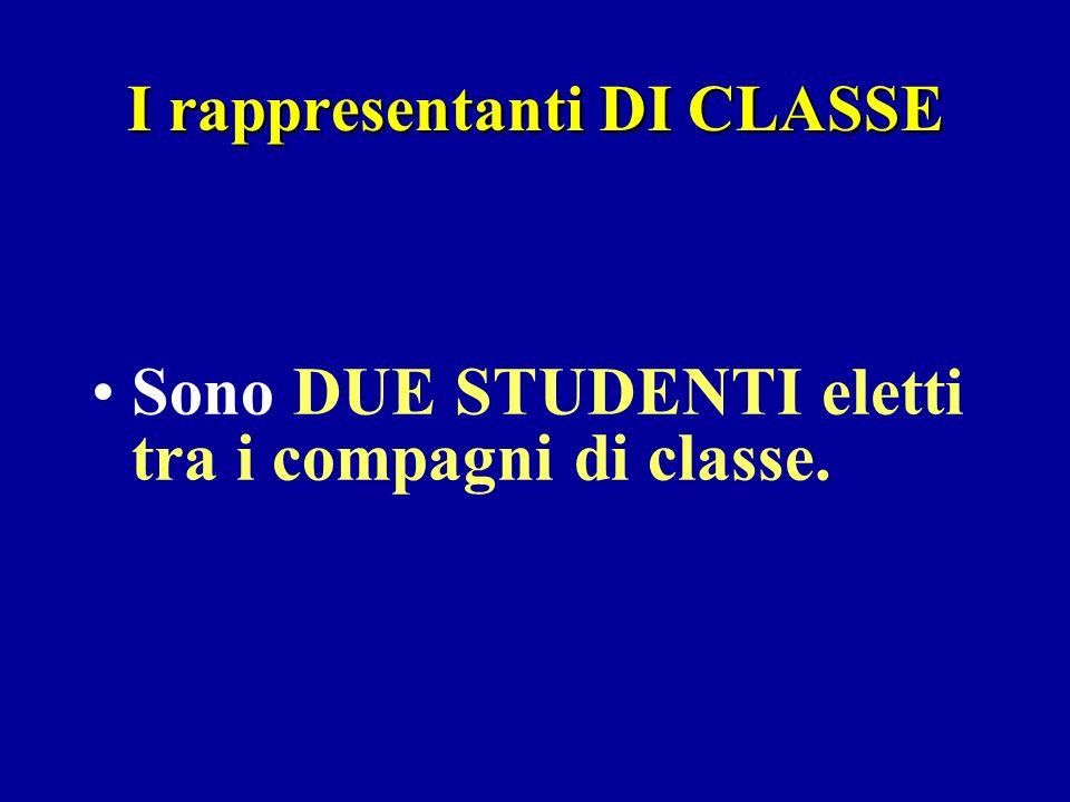 I rappresentanti DI CLASSE Sono DUE STUDENTI eletti tra i compagni di classe.