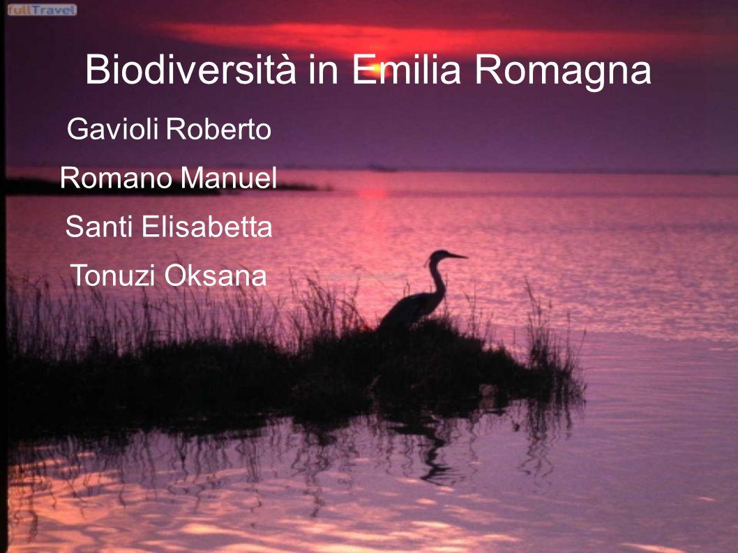 Biodiversità in Emilia Romagna Gavioli Roberto Romano Manuel Santi Elisabetta Tonuzi Oksana