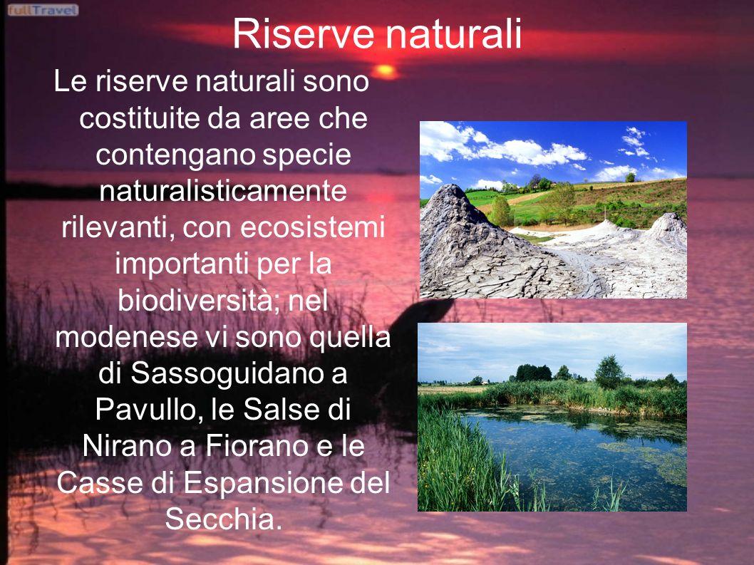 Riserve naturali Le riserve naturali sono costituite da aree che contengano specie naturalisticamente rilevanti, con ecosistemi importanti per la biod