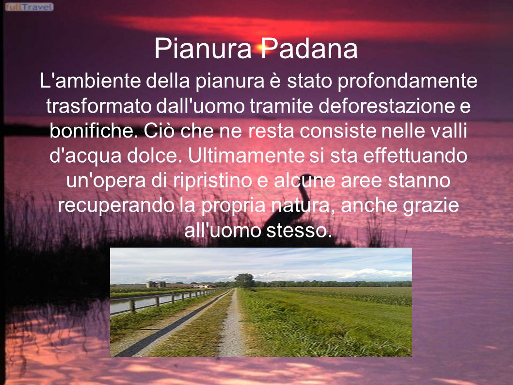 Pianura Padana L'ambiente della pianura è stato profondamente trasformato dall'uomo tramite deforestazione e bonifiche. Ciò che ne resta consiste nell