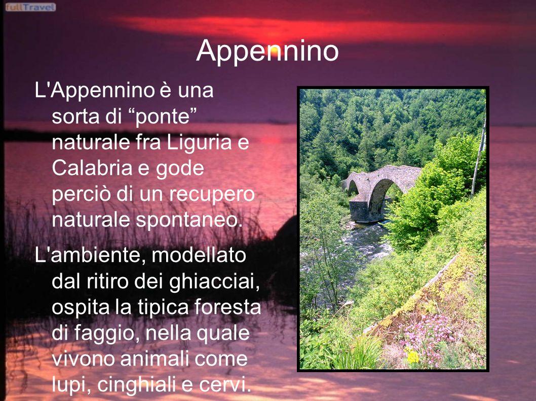 Appennino L'Appennino è una sorta di ponte naturale fra Liguria e Calabria e gode perciò di un recupero naturale spontaneo. L'ambiente, modellato dal