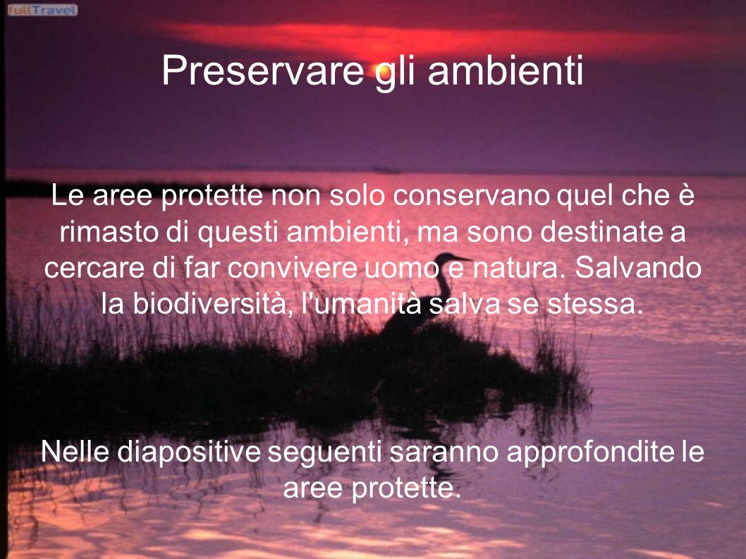 Preservare gli ambienti Le aree protette non solo conservano quel che è rimasto di questi ambienti, ma sono destinate a cercare di far convivere uomo e natura.