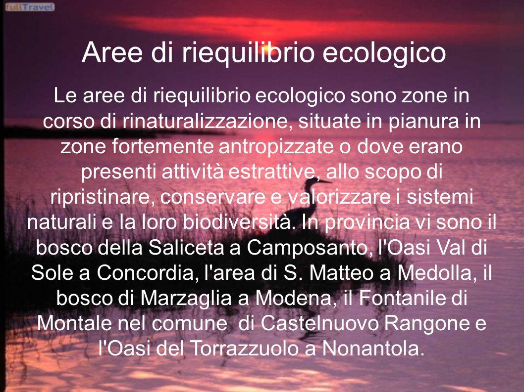 Aree di riequilibrio ecologico Le aree di riequilibrio ecologico sono zone in corso di rinaturalizzazione, situate in pianura in zone fortemente antro