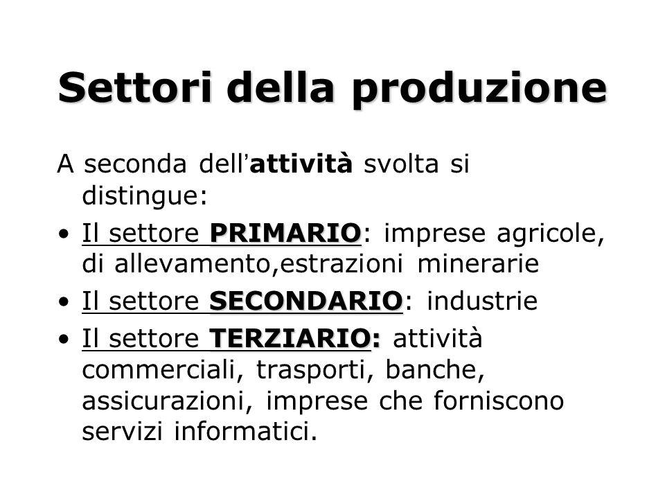Settori della produzione A seconda dellattività svolta si distingue: PRIMARIOIl settore PRIMARIO: imprese agricole, di allevamento,estrazioni minerari