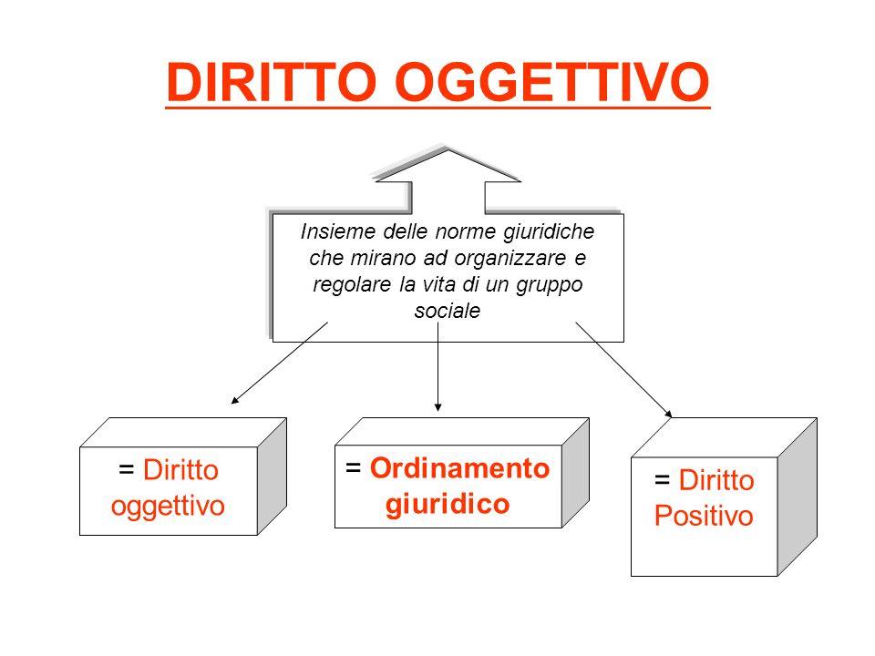 DIRITTO OGGETTIVO Insieme delle norme giuridiche che mirano ad organizzare e regolare la vita di un gruppo sociale = Diritto oggettivo = Ordinamento g