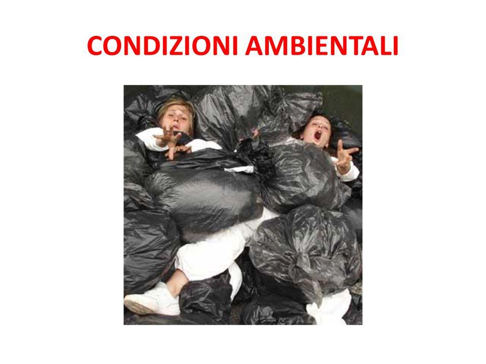 CONDIZIONI AMBIENTALI