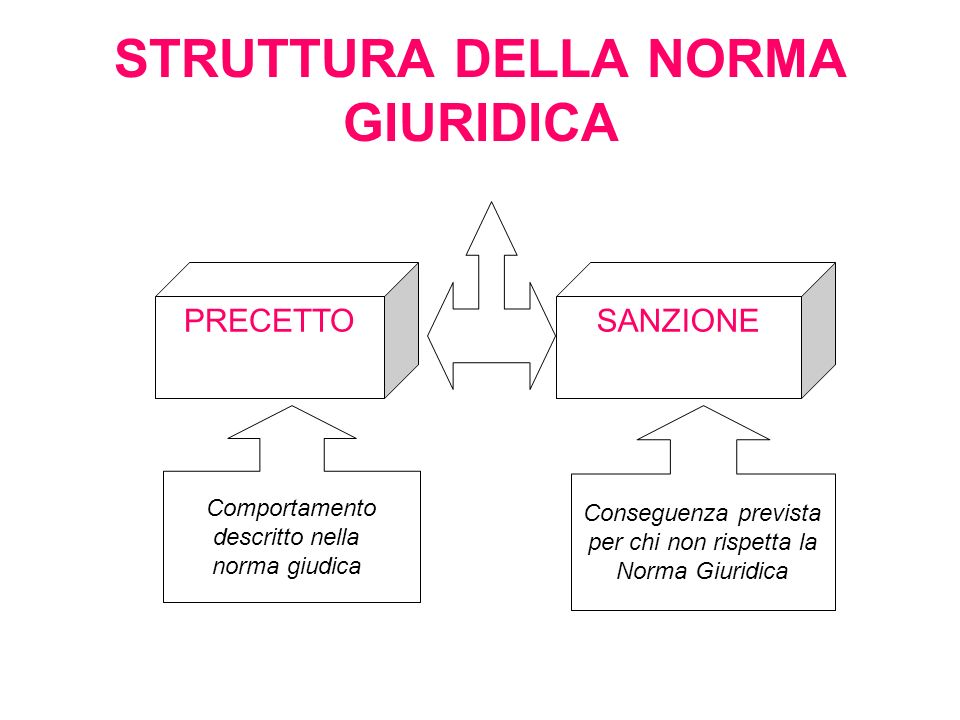STRUTTURA DELLA NORMA GIURIDICA PRECETTOSANZIONE Comportamento descritto nella norma giudica Conseguenza prevista per chi non rispetta la Norma Giuridica