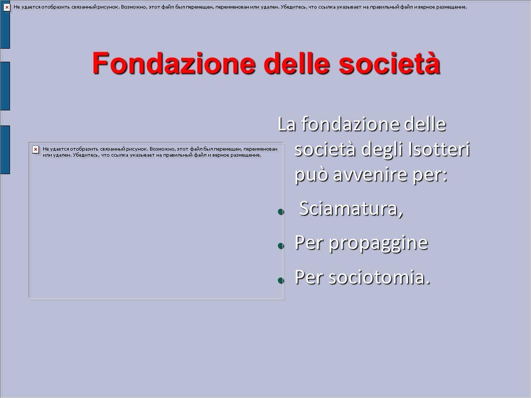 Fondazione delle società La fondazione delle società degli Isotteri può avvenire per: Sciamatura, Sciamatura, Per propaggine Per propaggine Per sociot