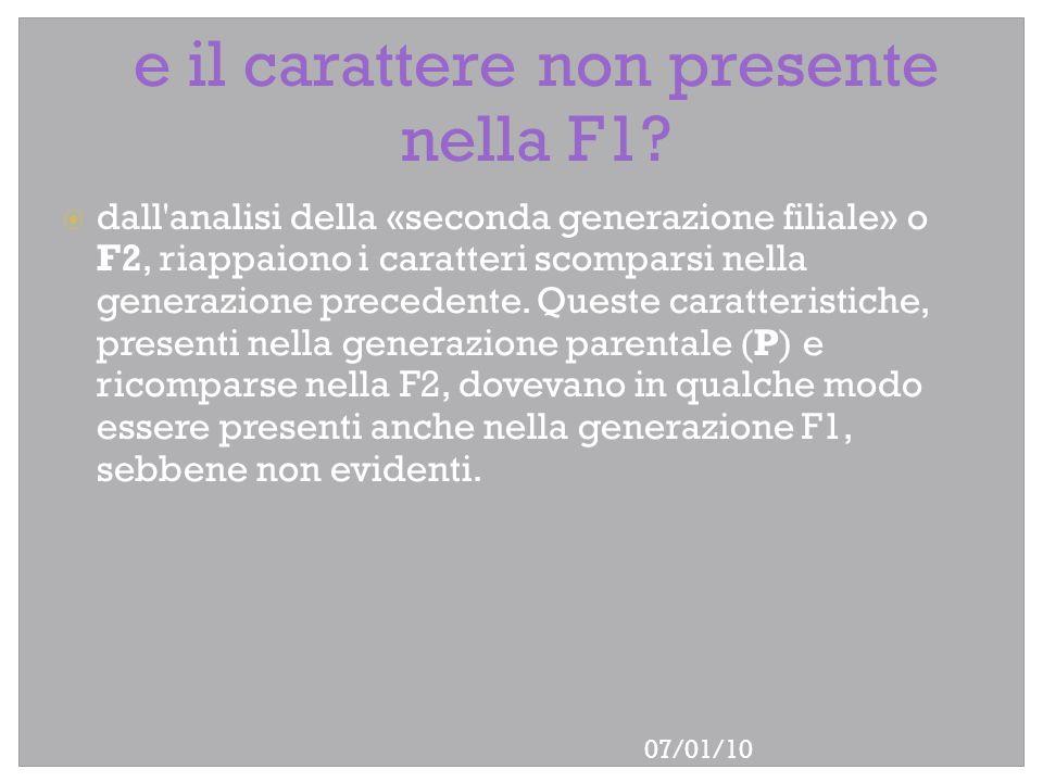 07/01/10 e il carattere non presente nella F1? dall'analisi della «seconda generazione filiale» o F2, riappaiono i caratteri scomparsi nella generazio