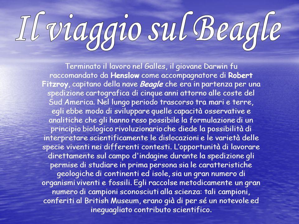 Circumnavigazione del globo compiuta da Charles Darwin a bordo dell HMS Beagle dal 27 dicembre 1831 al 2 ottobre 1836.