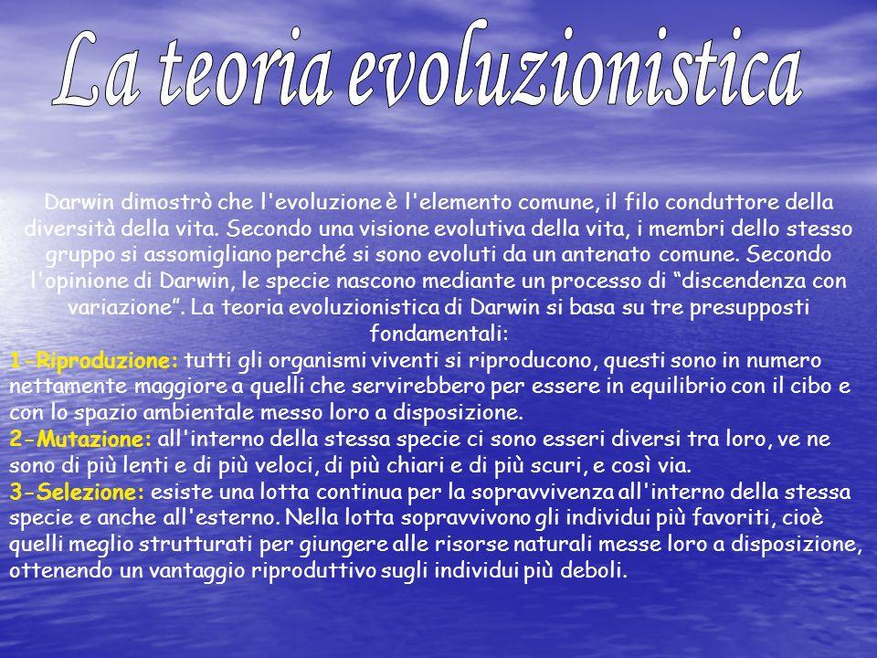 Darwin dimostrò che l'evoluzione è l'elemento comune, il filo conduttore della diversità della vita. Secondo una visione evolutiva della vita, i membr