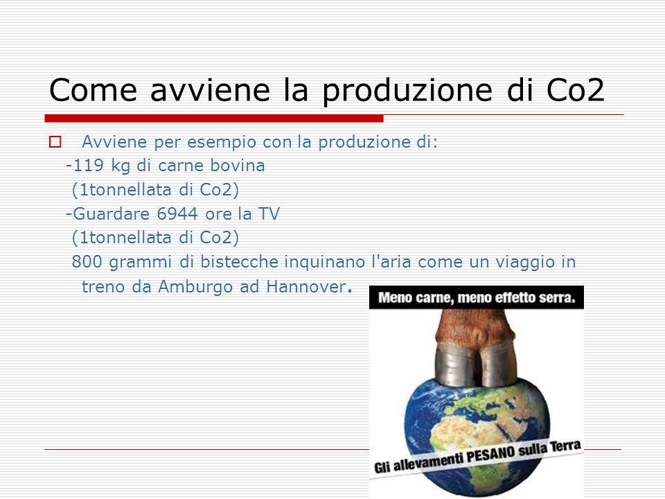 Come avviene la produzione di Co2 Avviene per esempio con la produzione di: -119 kg di carne bovina (1tonnellata di Co2) -Guardare 6944 ore la TV (1to
