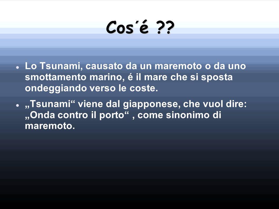 Cos´é ?? Lo Tsunami, causato da un maremoto o da uno smottamento marino, é il mare che si sposta ondeggiando verso le coste. Tsunami viene dal giappon