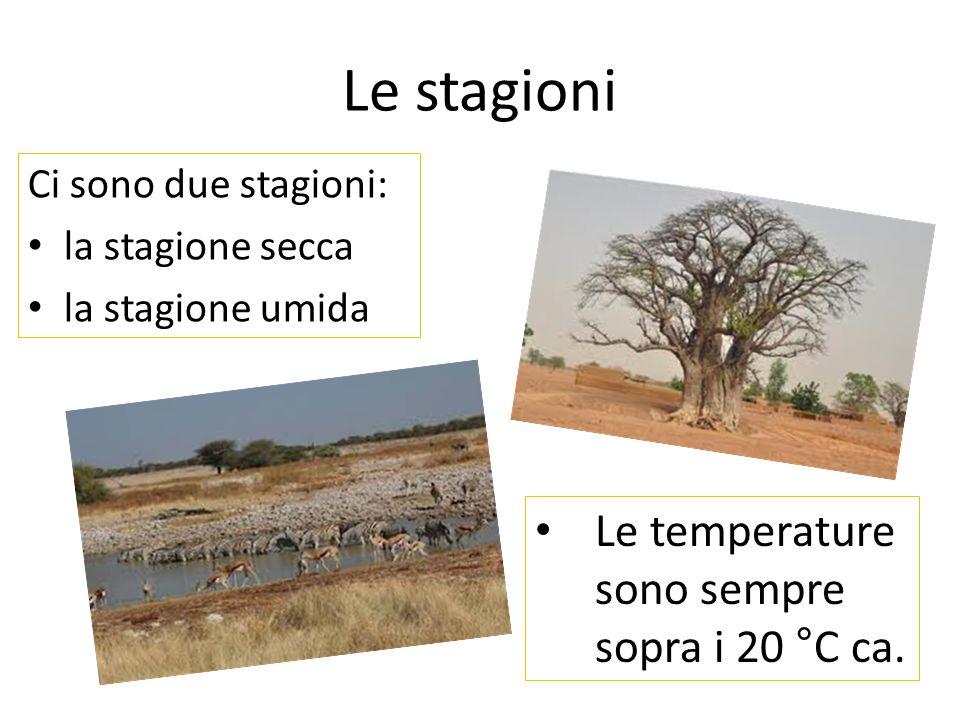 Le stagioni Ci sono due stagioni: la stagione secca la stagione umida Le temperature sono sempre sopra i 20 °C ca.