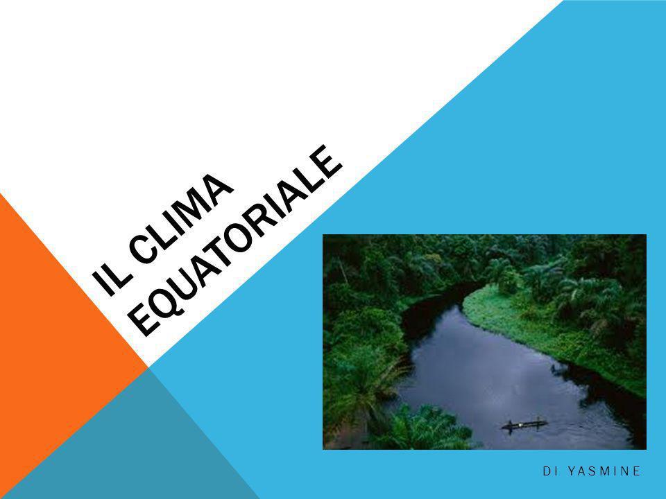 I TEMI: Dove c´è il CLIMA EQUATORIALE? Piante ed animali Com´è il CLIMA EQUATORIALE?