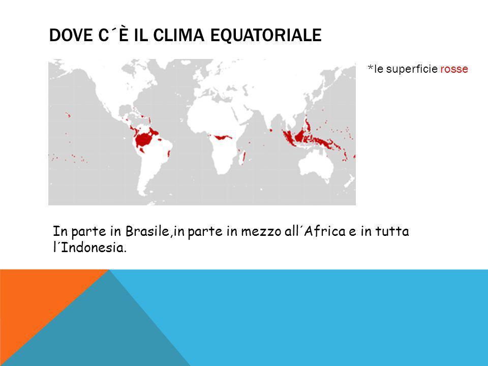 DOVE C´È IL CLIMA EQUATORIALE *le superficie rosse In parte in Brasile,in parte in mezzo all´Africa e in tutta l´Indonesia.